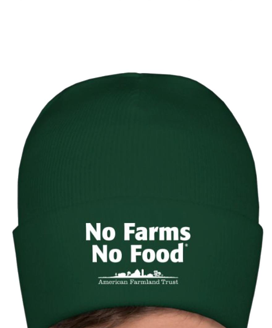 AFT_knit_hat_green_large