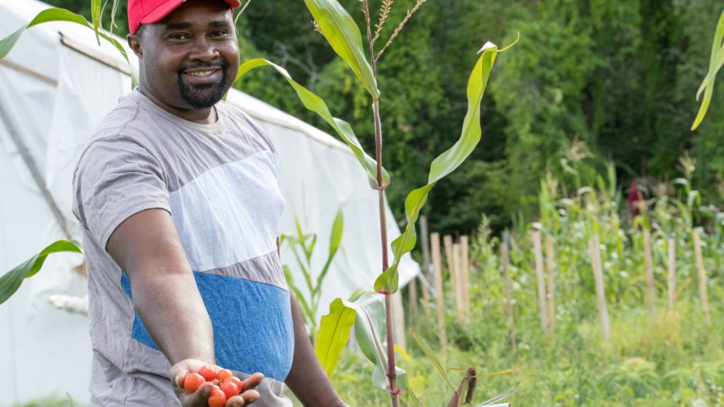 A farmer, smiling, holds out tomatoes.