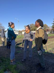 women and black farmers
